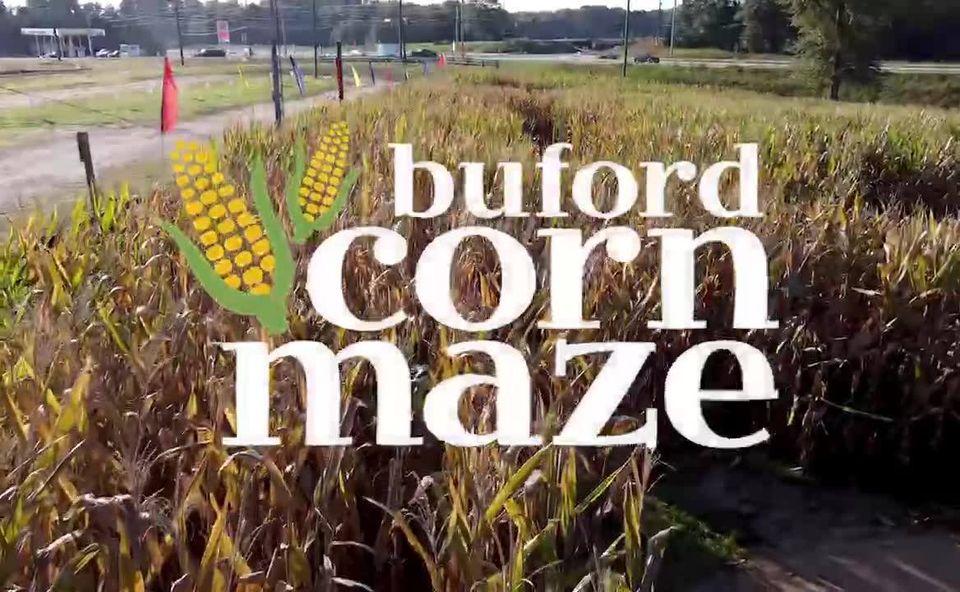 Buford Corn Maze (BUFORD)