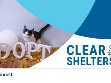 Pet Adoption - Clear the Shelter Event (LAWRENCEVILLE)
