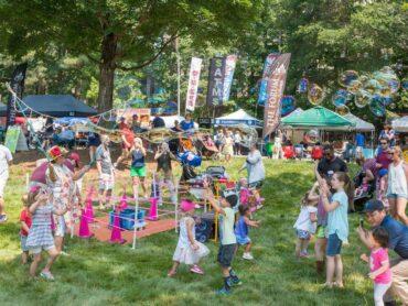 10th Annual Peachtree Corners Festival