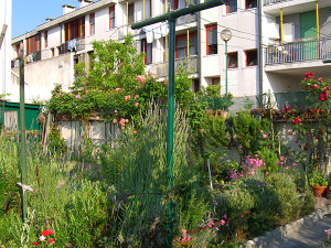 These Murano residents are lucky, they have a garden and a clothesline.