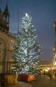 San Marco Christmas Tree 2014 by Night