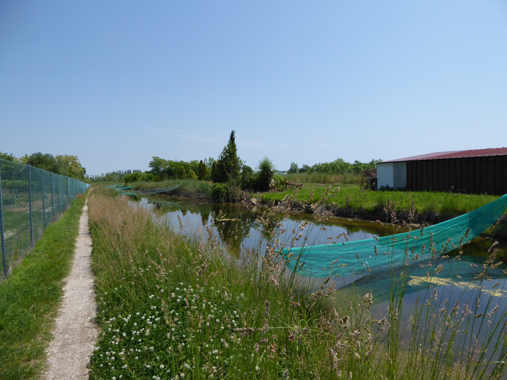 Nets for Fishing on Sant'Erasmo