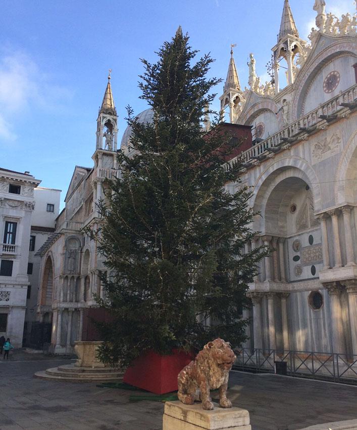 San Marco Chritmas Tree