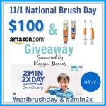 Enter : National Brush Day Giveaway
