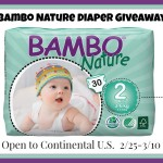 Enter : Bambo Nature Diaper Giveaway