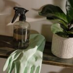 Make Your Home Healthy With These Tips