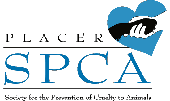 placer spca-png-trans