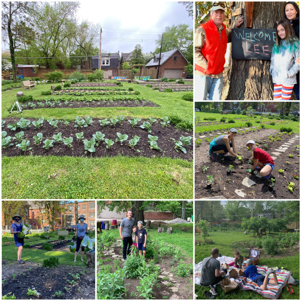 Nicki's Central West End Guide Services Urban Gardens  The Storied House The Creative Courant Suzanne Miller Farrell Lee Cagle Kate Haher CWE North Community Improvement District CWE Farm