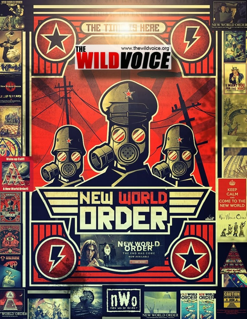 New World Order poster