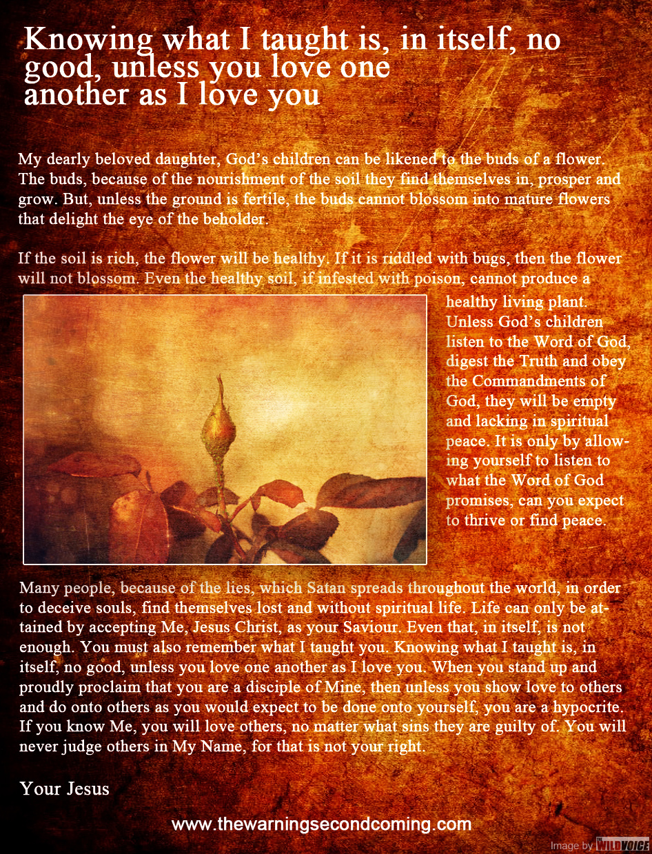 Jesus Message on The Warning Second Coming