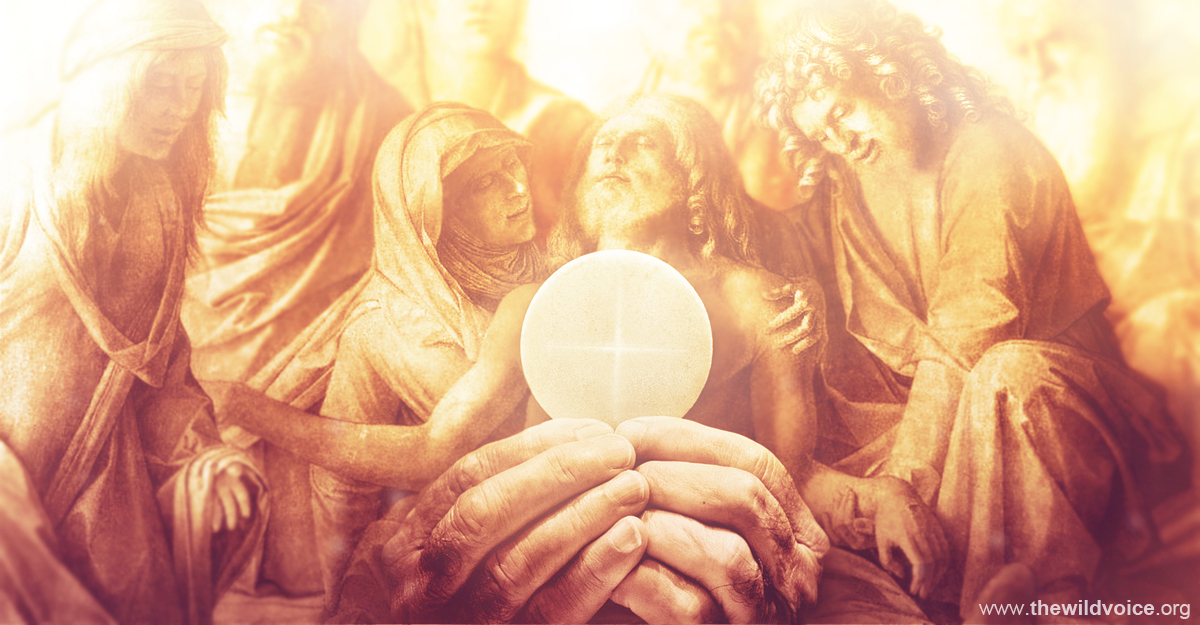 Eucharist, Tony, Palmer, Pope, Francis, False, Prophet, The, Wild, Voice, Maria, Divine, Mercy, Jesus, Christ, God, Catholic, Church, Synod, Abomination, Desolation, brother, masonry, masonic, freemasonry, change