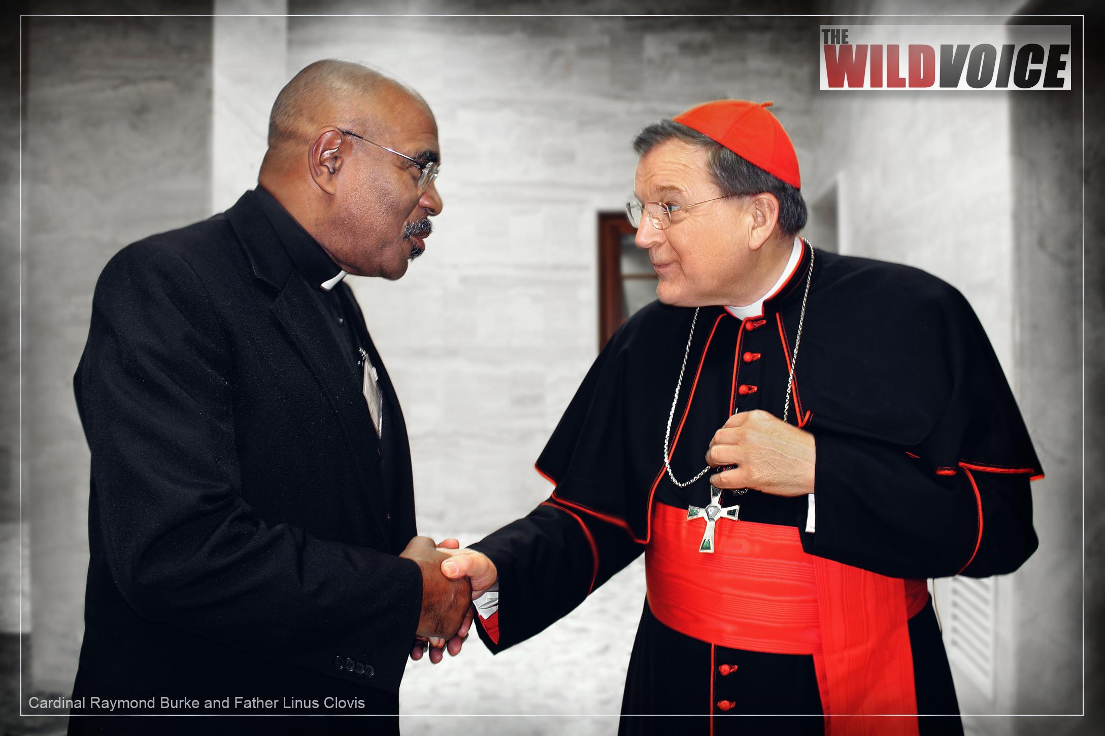 Cardinal, Raymond Burke, Father, Linus Clovis, truth, slander, lies, defamation, pope francis, false prophet, wild voice, bergoglio, catholic, church, francis effect