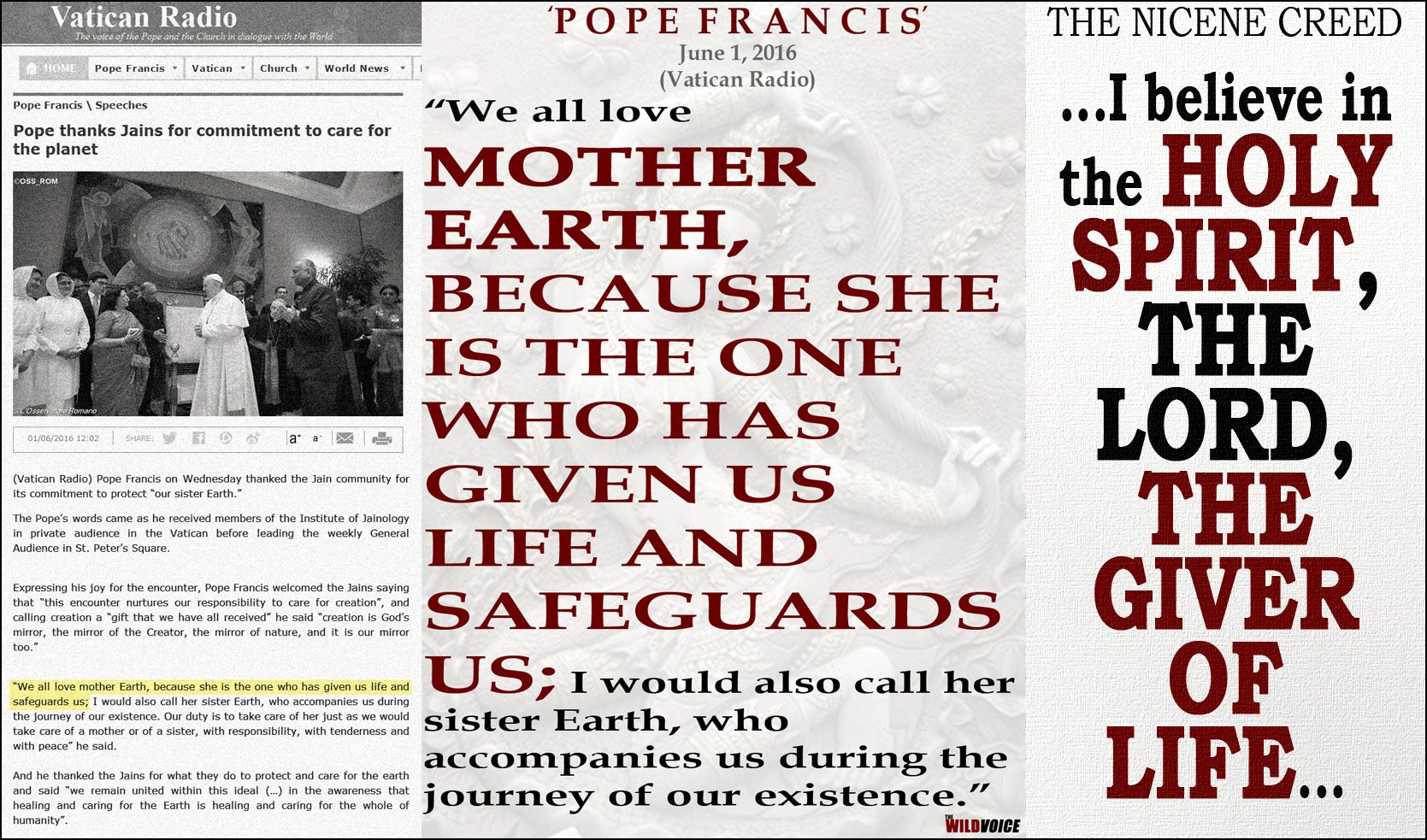 Pope Francis Mother Earth