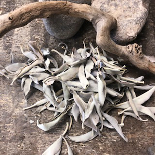 White Sage – Loose Leaves Packaged