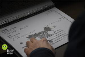 觀鳥屋內。近鏡。一隻手在觸摸琵嘴鴨的觸感圖。圖上的質感清晰可見。Inside a bird hide. Close up of a hand touching a Northern Shoveler tactile. Light reflects on the tactile, highlight the texture of it.