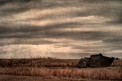 _DTR5319_HDR