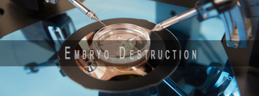Vitro Fertilization Embryo Destruction Law Firm