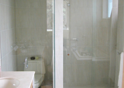 water closet and shower glass