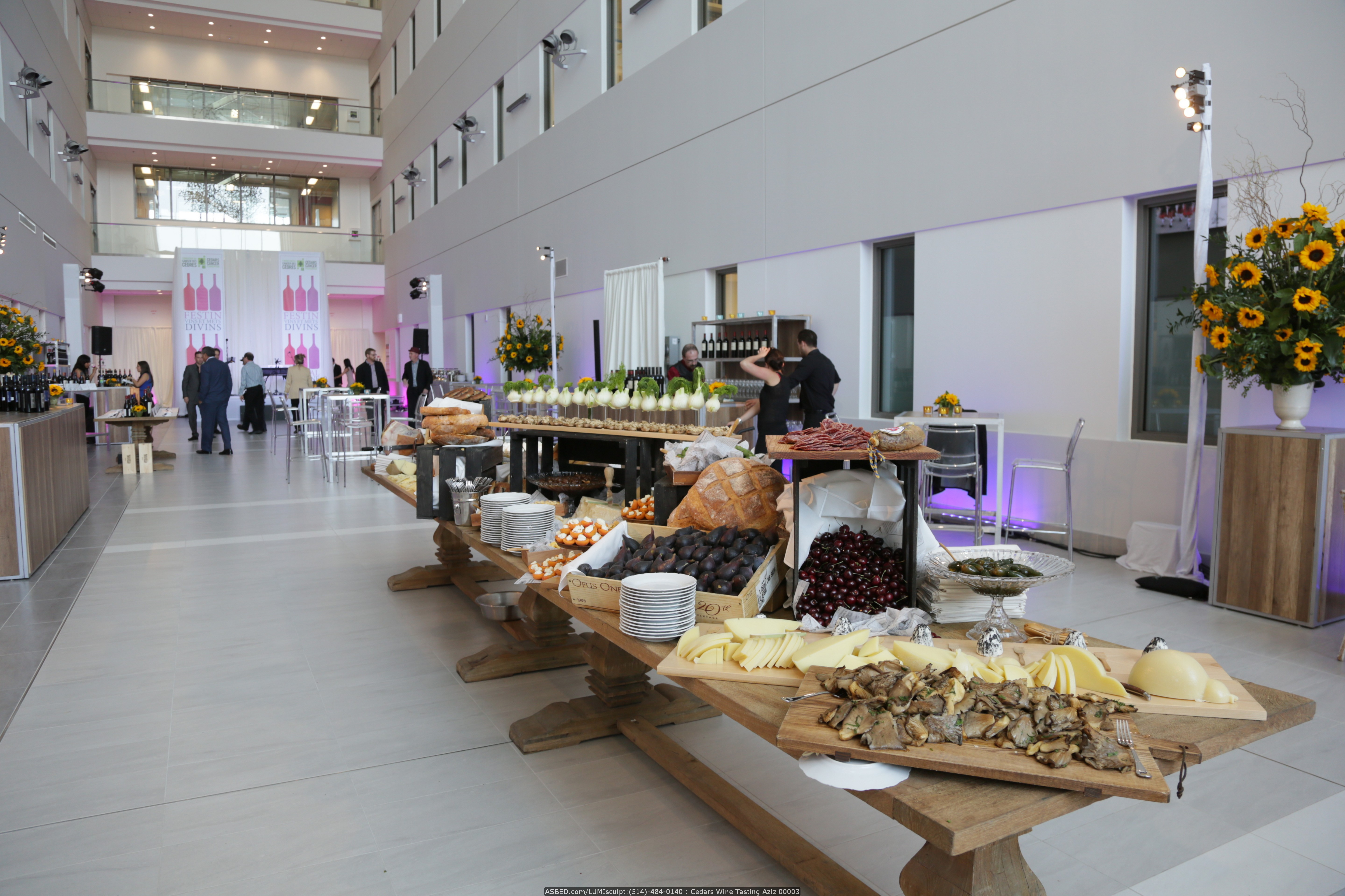 Cedars Festival of Divine Wine and Food