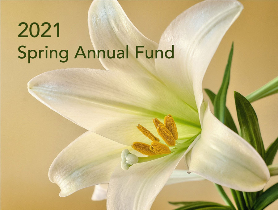 Donate to 2021 Spring Annual Fund