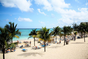 Jamaica for Business and Pleasure