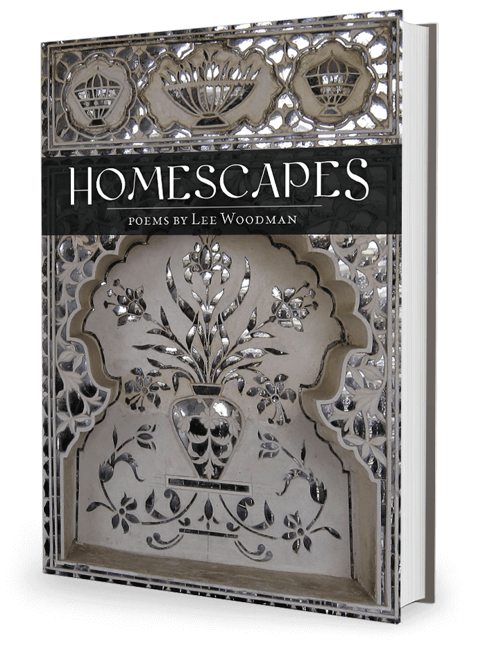 Homescapes by Lee Woodman 3d Bookshot