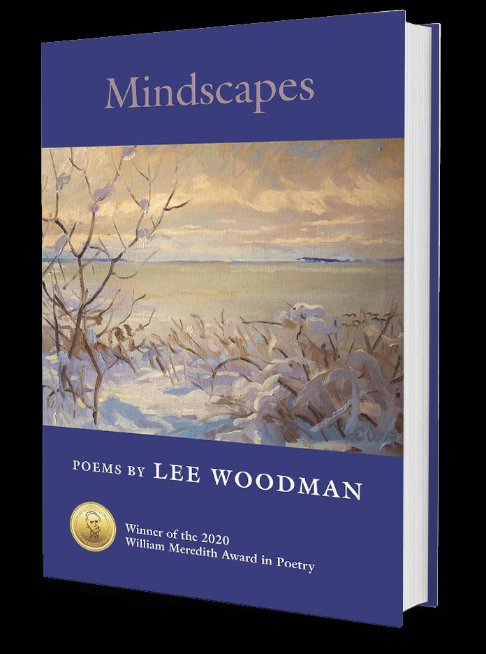 Mindscapes by Lee Woodman 3d Bookshot