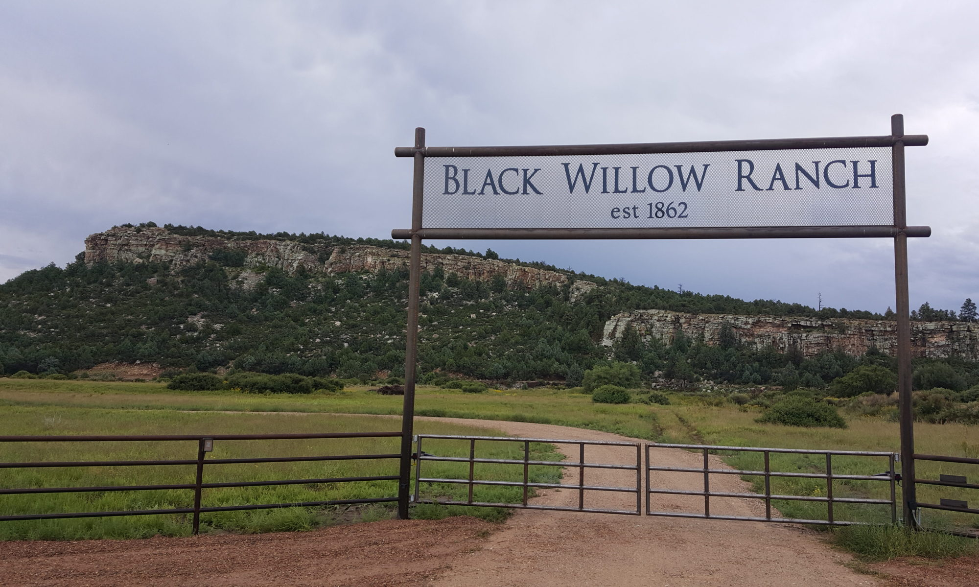 Black Willow Ranch
