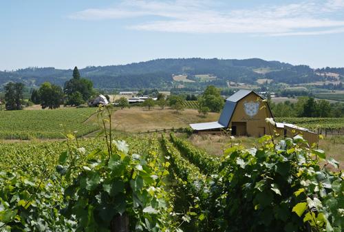 Bergstrom_Vineyards