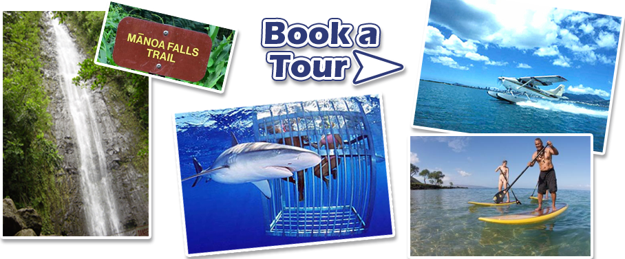 BookTours