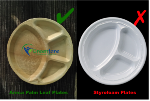 better alternative to styrofoam EPS plates