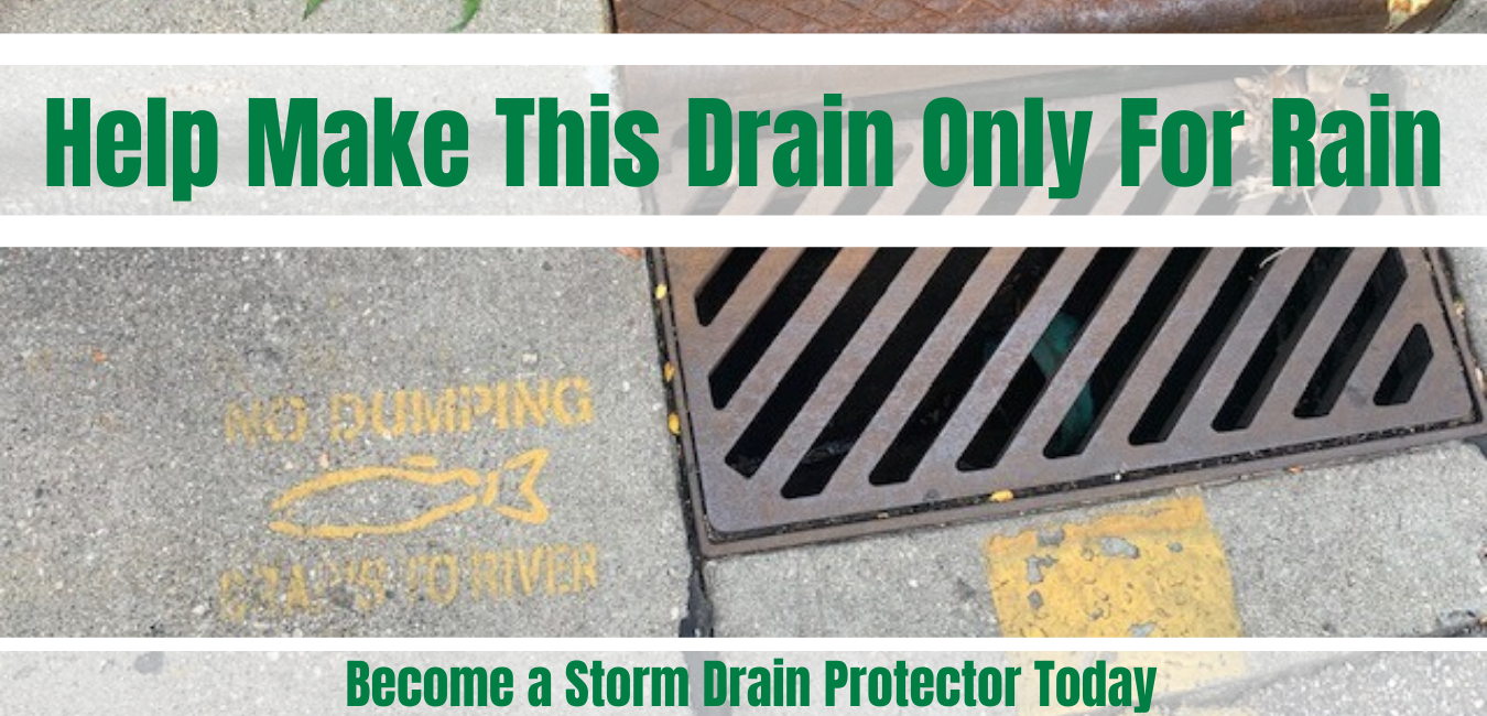 Help make storm drains for only rain by keeping everything but rain from entering the drains