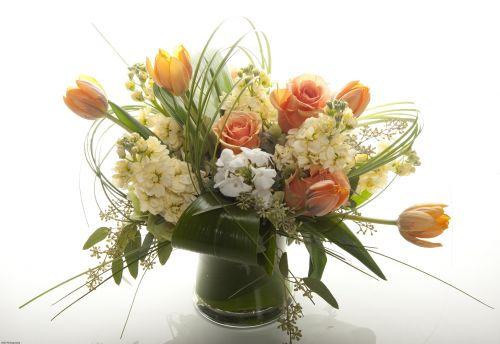 Peaches N Cream Flowers