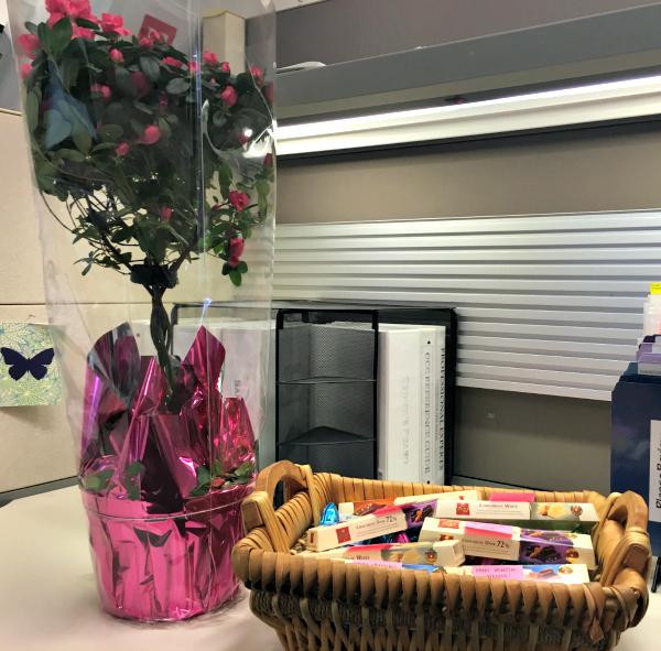 Chocolat Frey Surprise Gift