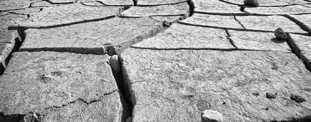 Cracked_Earth_in_Ladakh_2014.jpg