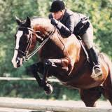 Equestrians and the mental game