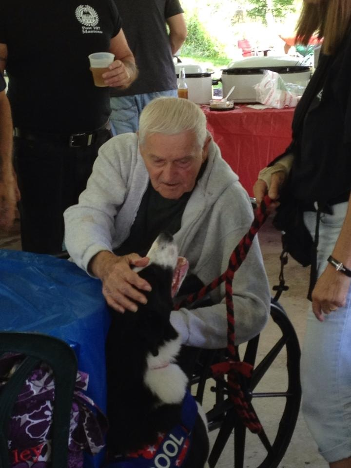 Cool doing one if his favorite things, being a Therapy Dog at the Veterans Picnic