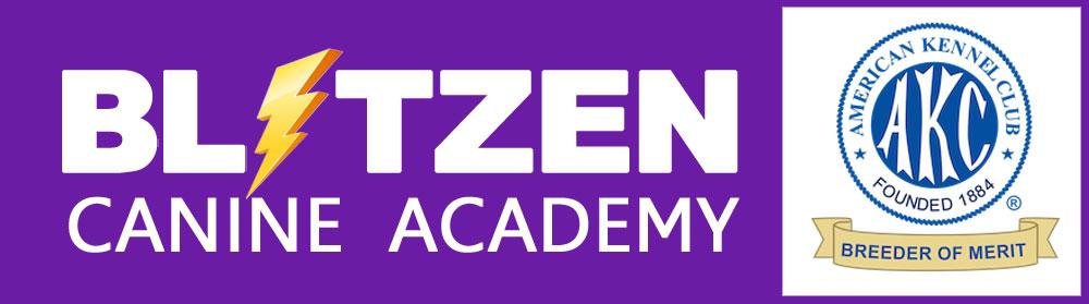 blitzen-logo-lg