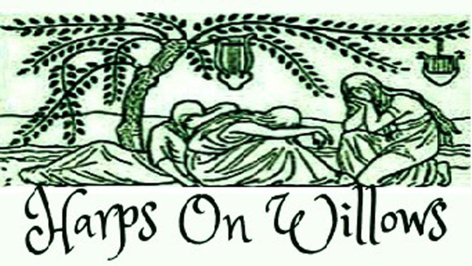 Harps On Willows Journey Begin