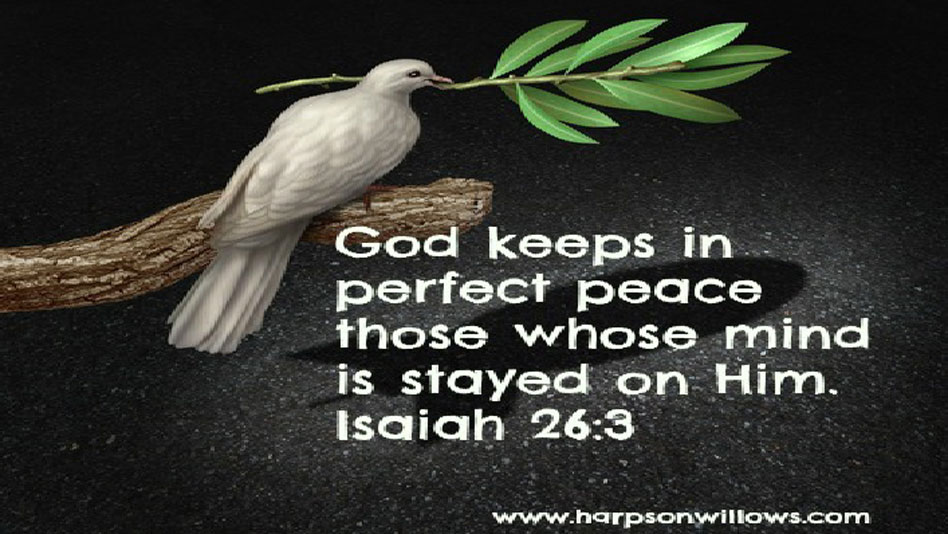 Harps On Willows War and Peace Isaiah 26 3