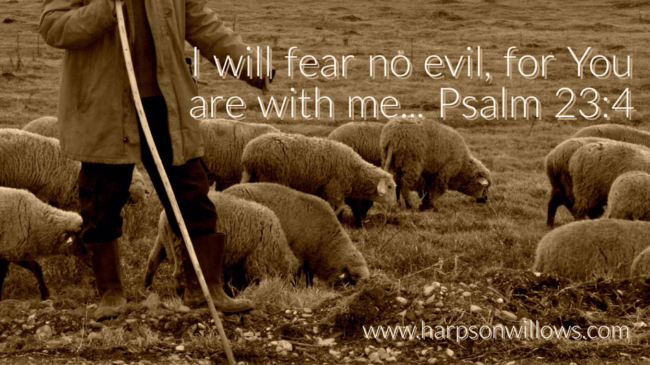 Harps On Willows Psalm 23 4 I Will Fear No Evil For You Are With Me