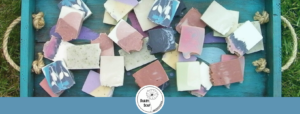 Dandy Soap: Choosing The  Best for the Environment and Your Body