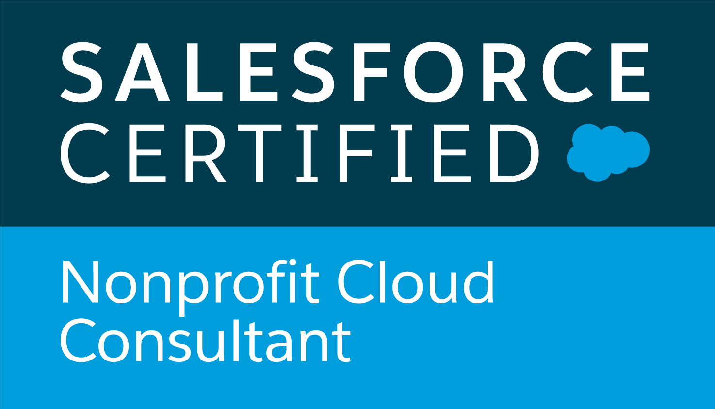 Salesforce Nonprofit Cloud Consultant