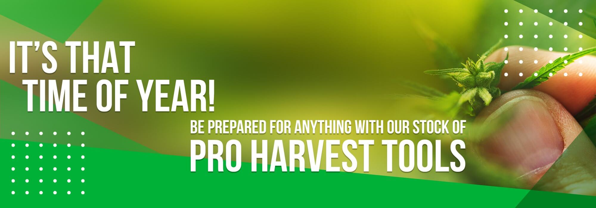 Harvest Time Banner