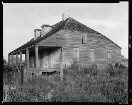 dead mule school