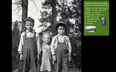 Bigfork Stories – Where History Comes Alive