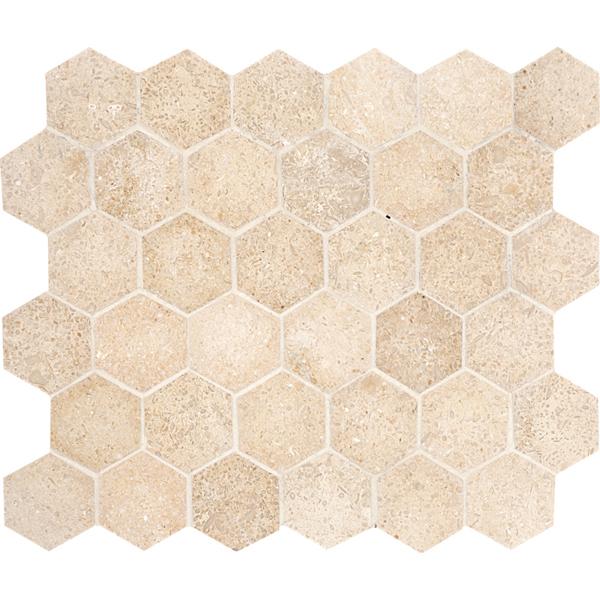 Seashell Hexagon