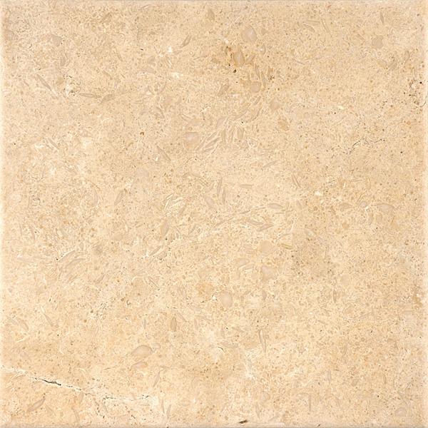 Seashell Antiqued Limestone