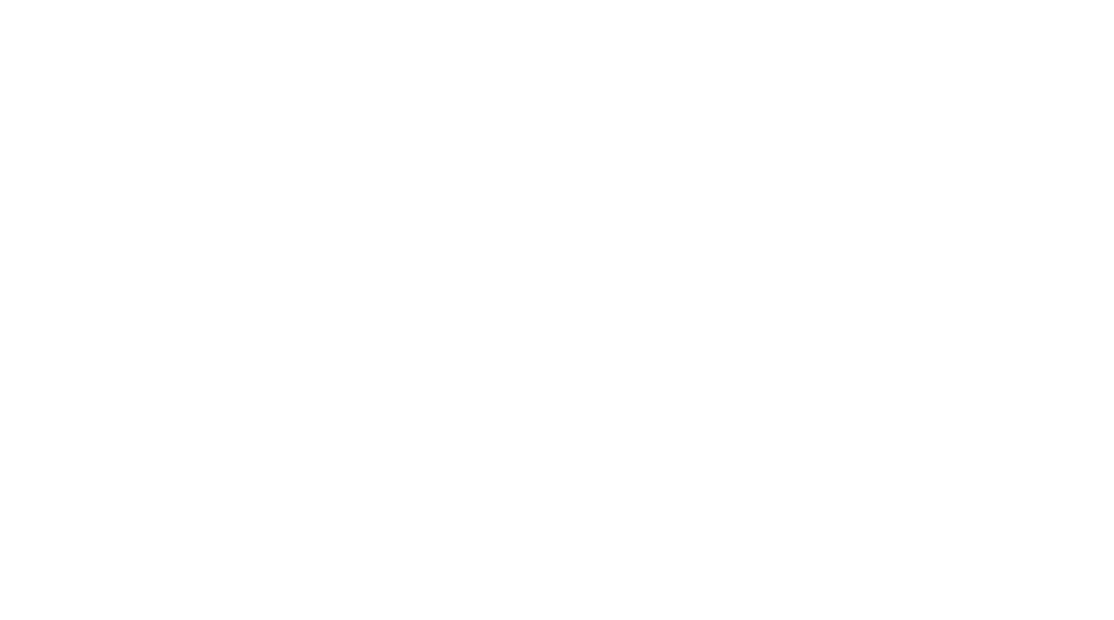 Borruso Law Logo