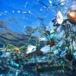 5 Tips to Reduce Plastic Waste & Ocean Pollution